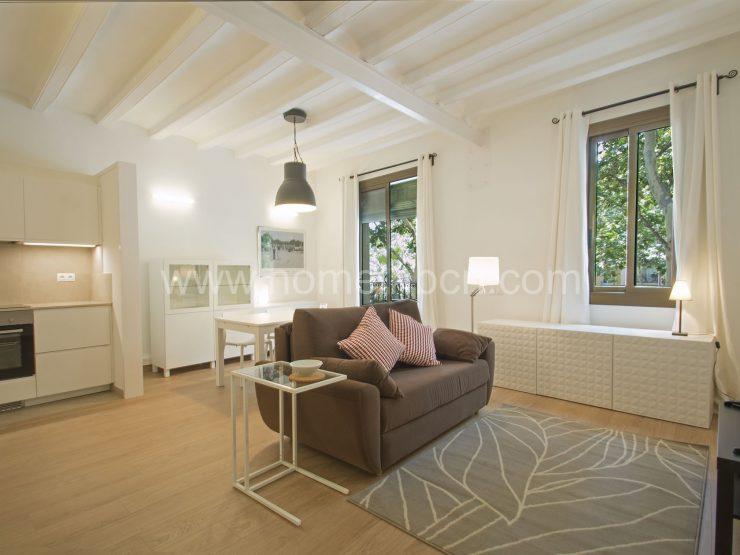 Rambla del Raval apartment